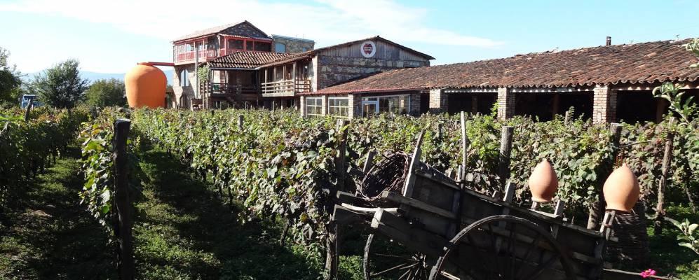 Село Напареули
