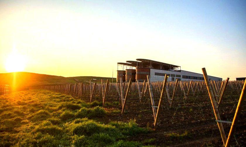 Винодельня Alma Valley