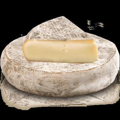 Сыр Сен Нектэр