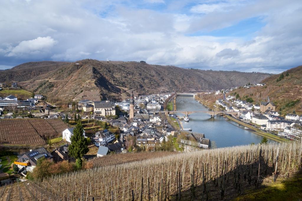 Виноградники на реке Мозель