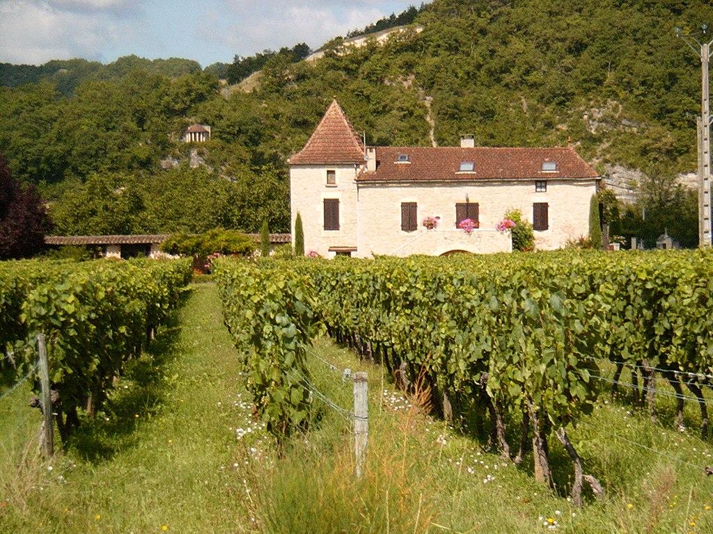 Виноградник в Каоре