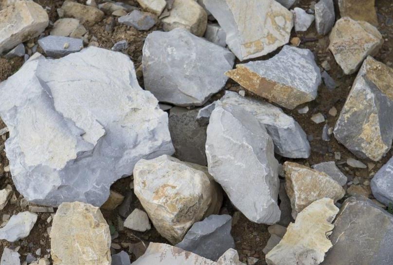 Почвы альберезе